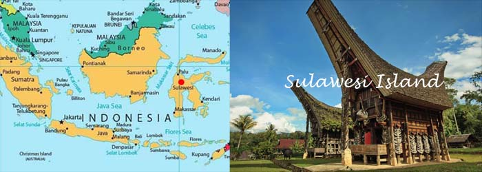 SULAWESI_ISLAND_PHOTO.jpg